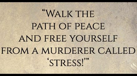 """There is a murderer who wants to live with you; he is called """"stress!"""""""